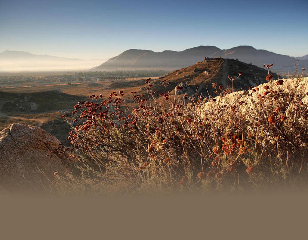 Moreno Valley  >> City Of Moreno Valley California
